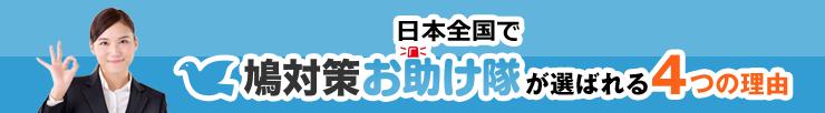 日本全国で鳩対策お助け隊が選ばれる4つの理由